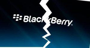 blackberry-roto