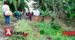 Busqueda-Las-Guaranas
