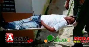 Envenenado-Piña-de-Jaya