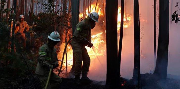 Incendio-forestal-portugal