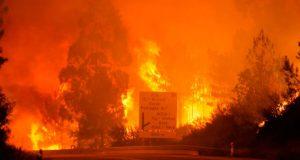 Incendio-portugal1