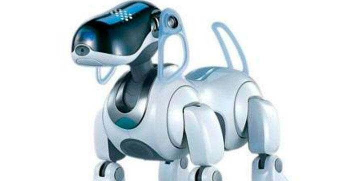 Robot-mascota