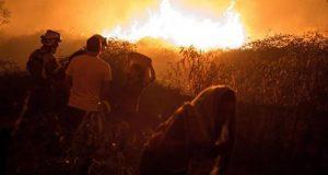 cuatro-muertos-y-miles-de-hectareas-quemadas