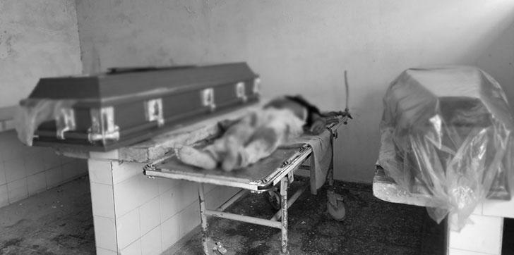 Resultado de imagen para Matan dos personas en el municipio El Factor de Nagua