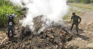 Medio-Ambiente-quema