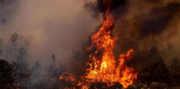 Incendio-al-norte